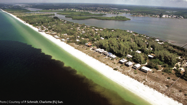 Havoc Inflicted From Red Tide On States West Coast Waterfront Times